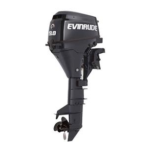 Evinrude Johnson 9.9 CV