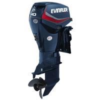 Evinrude Johnson 40 CV
